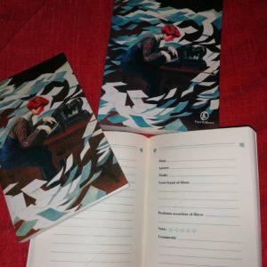 diario di lettura de La ragazza con la macchina da scrivere
